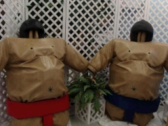 Rental store for SUMO WRESTLING SUITS in Whitefish MT