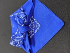 Rental store for LINEN, NAPKIN BANDANA BLUE in Whitefish MT