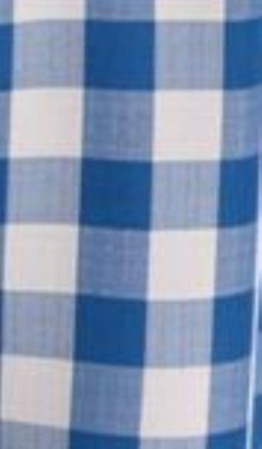 Rental store for LINEN, NAPKIN GINGHAM BLUE 17 in Whitefish MT