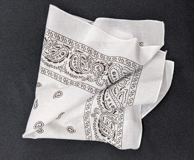 Where to find LINEN, NAPKIN BANDANA  WHITE in Whitefish