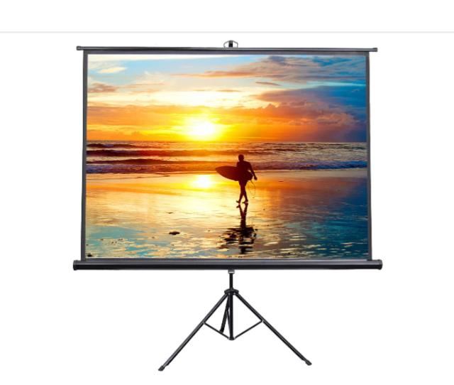 Where to find PROJECTOR SCREEN 100 in Whitefish